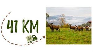 Km + photo - Ferme du Bergenbach