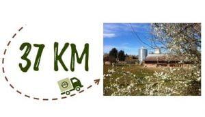 Km + Photo - Ferme Pflieger