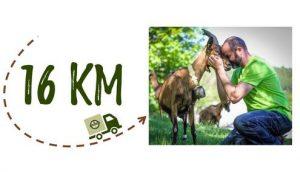 Km + Photo - Ferme Steinmauer