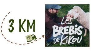 Km + Photo - Les Brebis de Kikou
