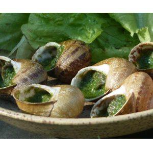 Coquille bourguignonne - L'escargot du Florival