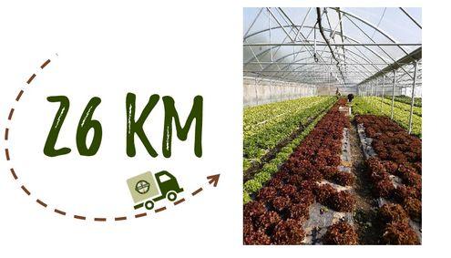 Km + Photo - Ferme Koehly