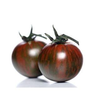 Plant tomate cerise black cherry - Jardinier Florival